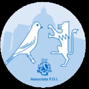 Calendario Fiere Ornitologiche.Mostra Ornitologica Lago Di Garda Eventi Manifestazioni